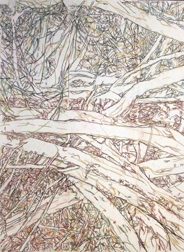 Undergrowth 2 Image